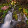- Spray Park, Mount Rainier National Park, Washington