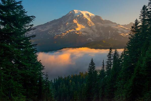 Looking Down Valley At Mt Rainier_Mount Rainier National Park_Washington