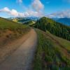 Hiking Trail In The Higher Regions Of The Olympics - - Hurricane Ridge, Olympic National Park, WA