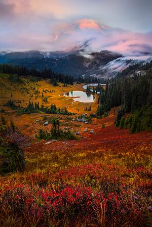 Sunrise From Very Top Of Tipsoo Lake -Mount Rainier National Park, Washington