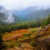 ooking Down On Canyon On Road Up Rainier -Mount Rainier National Park, Washington