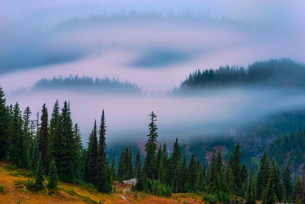 Rolling Fog Through Valley - Chinook Pass,  Mount Rainier National Park, Washington