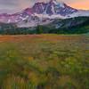 Shades Of Green And Yellow - Mystic Lake, Mount Rainier National Park, WA
