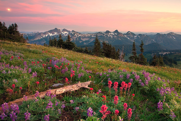 Images from around the state of Washington