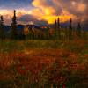 A Sliver Of Storm Light - Denali National Park, Alaska