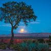 Grand Canyon Under The Moonlight - North Rim, Grand Canyon Nat Park, Arizona