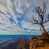 Hanging On By A Thread - North Rim, Grand Canyon Nat Park, Arizona