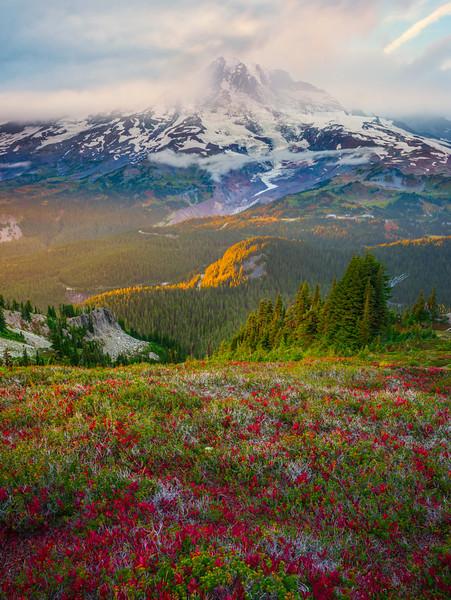 Sidelight Showcases Mountain And Fall Color Pinnacle Peak Trail, Plummer Peak, Mt Rainier National Park, WA