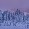 Mt Rainier In Twilight Color_Pano - Paradise Area, Mount Rainier National Park, WA