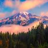 Autumn Valley At Mt Rainier At Sunrise