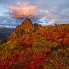 Fall Color Meadow Sunset Looking At Pinnacle Peak Pinnacle Peak Trail, Plummer Peak, Mt Rainier National Park, WA