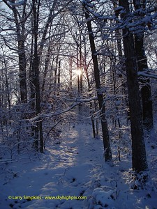 Snow covered trail through the woods, Louisa County, Virginia. December 2006