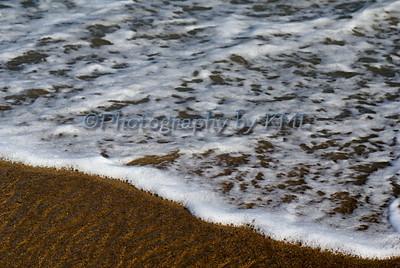 Sea Foam Macro
