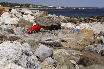 Red Buoy on the Rocks