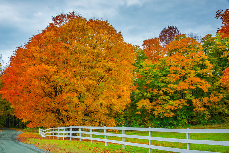 Driving The Rural Backroads Of Vermont