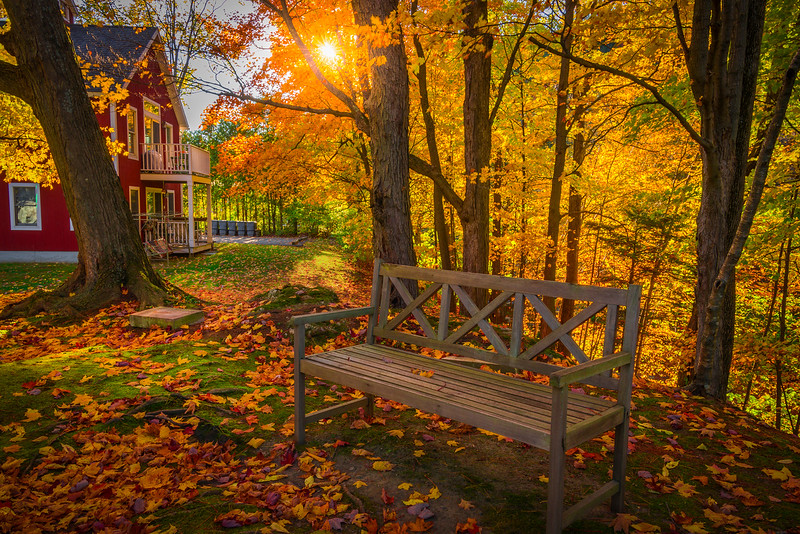 An Idyllic Vermont Park Setting