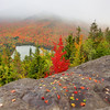 Images from around the Adirondacks