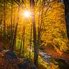 Sunburst Shining Down On Hiking Trail