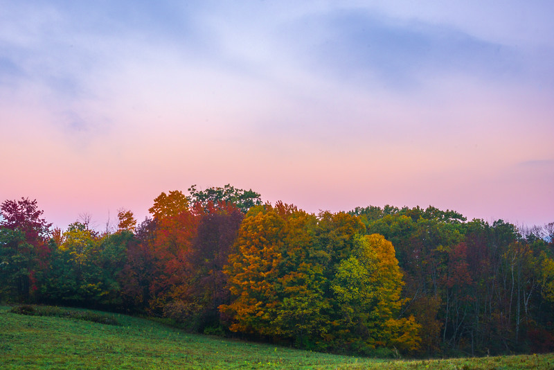 Early Morning Color Above The Forest Line