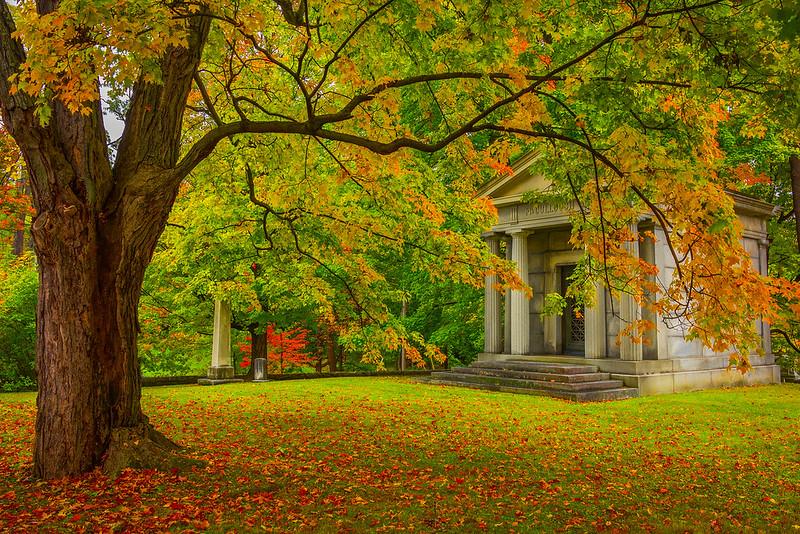Late Autumn Tribute