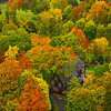Local Homes Immersed In Autumn Colors From Aerial Perspective