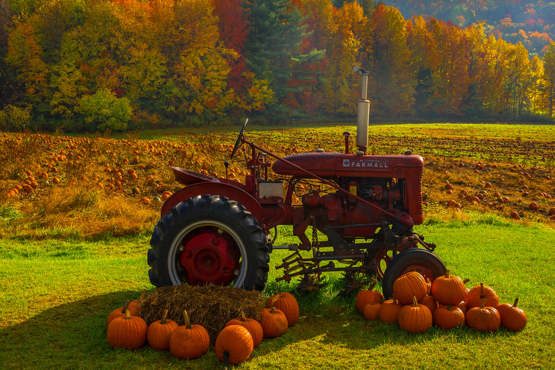 Halloween And Autumn Together In Vermont