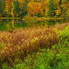 Autumn Color Next To Still Pond