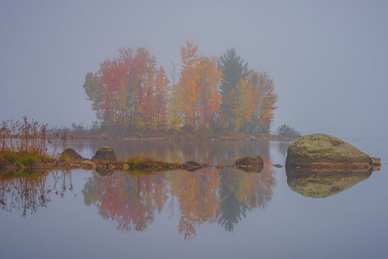 An Island Of Color Immersed In Mist