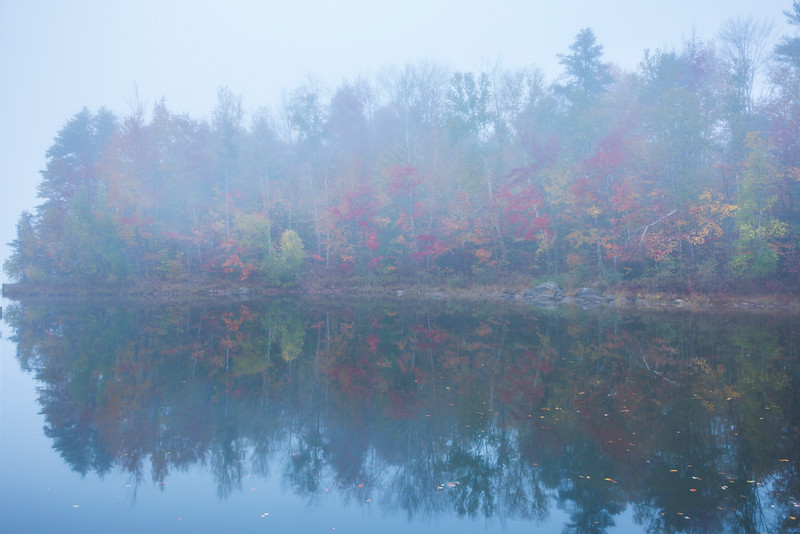 Morning Mist Break At The Pond