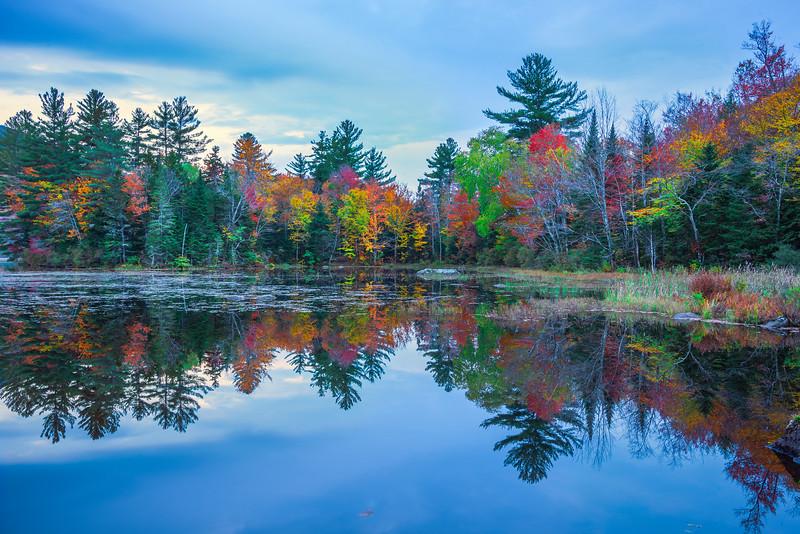 Marsh Pond Mirrors