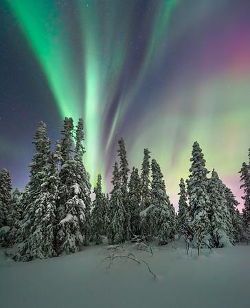 Ebb And Flow -Fairbanks, Mt Aurora Skiland, Alaska