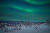 Flowing Waves Of Electric Light In The Sky - Mt Skiland, Fairbanks, Alaska