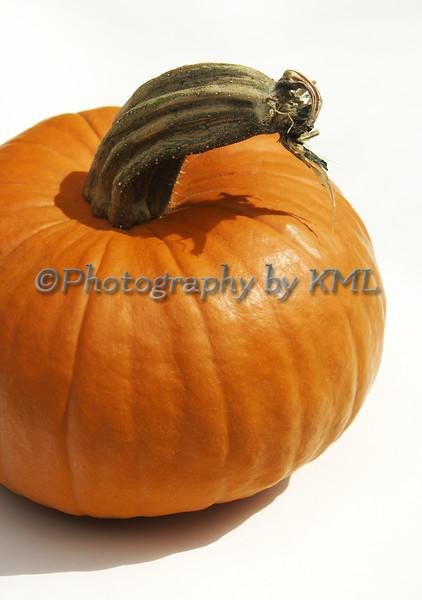 an orange pumpkin against a white background