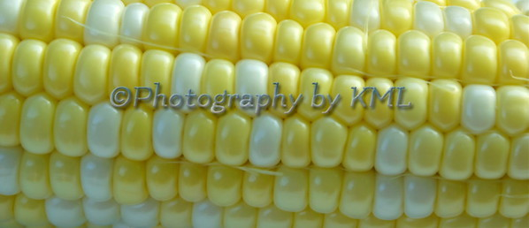 Corn on the Cob Macro