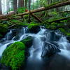 The Magic Of The Sol Duc Sol Duc Falls, Olympic National Park, WA