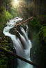 Sol Duc Falls From Bridge - Sol Duc Falls, Sol Duc Valley, Olympic National Park,, Washington