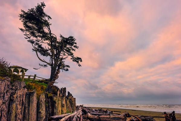 Kalaloch Beach Gazebo From Beach - Hoh Rainforest, Olympic National Park, Washington