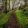 Oregon Coast, Oregon Stock Images_7