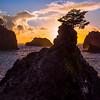 Sunset Silhouettes From Secret Beach -Secret Beach, Southern Oregon Coast, Oregon