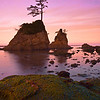 Oregon Coast, Oregon Stock Images_55