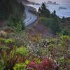 Heading Down Highway To Cape Sebastian - Cape Sebastian, Pistol River, Southern Oregon Coast, Oregon
