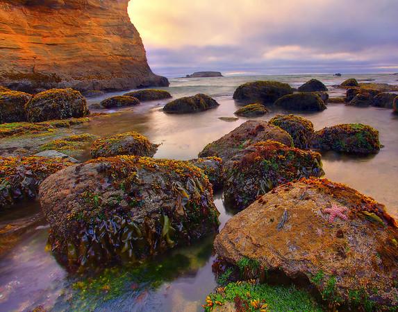 Oregon Coast, Oregon Stock Images_11