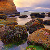 Oregon Coast, Oregon Stock Images_11