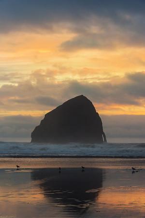 Oregon Coast, Oregon Stock Images_71