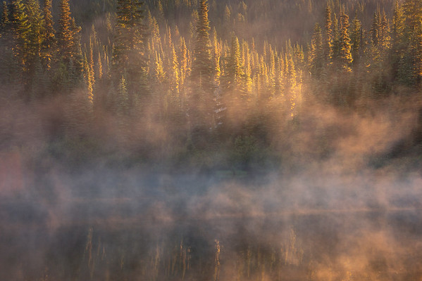 Misty Morning On The Lake As Sun Appears - Mount Rainier National Park, WA