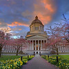 The Olympia Capital Building During Spring - Olympia, Washington