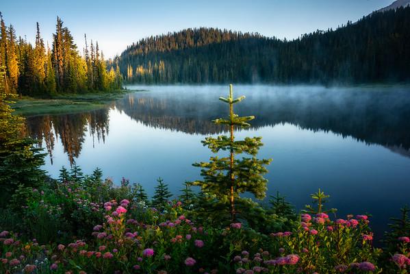First Morning Light Across The Lakes - Mount Rainier National Park, WA
