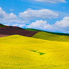 Palouse Stock Palouse Stock