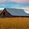 Tucked Away In Harvest _The Palouse_Eastern Washington