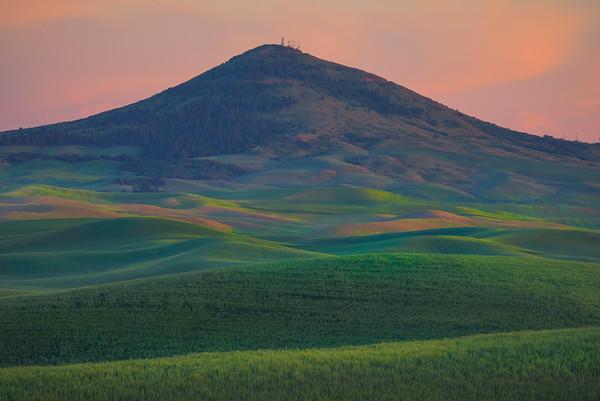 The Rolling Hills Into Steptoe Butte -The Palouse, Eastern Washington